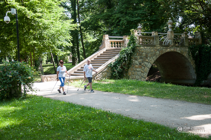 Kobieta i mężczyzna w białych bluzkach idą z kijkami do nordic walking po alei parkowej. W głębi kamienny mostek