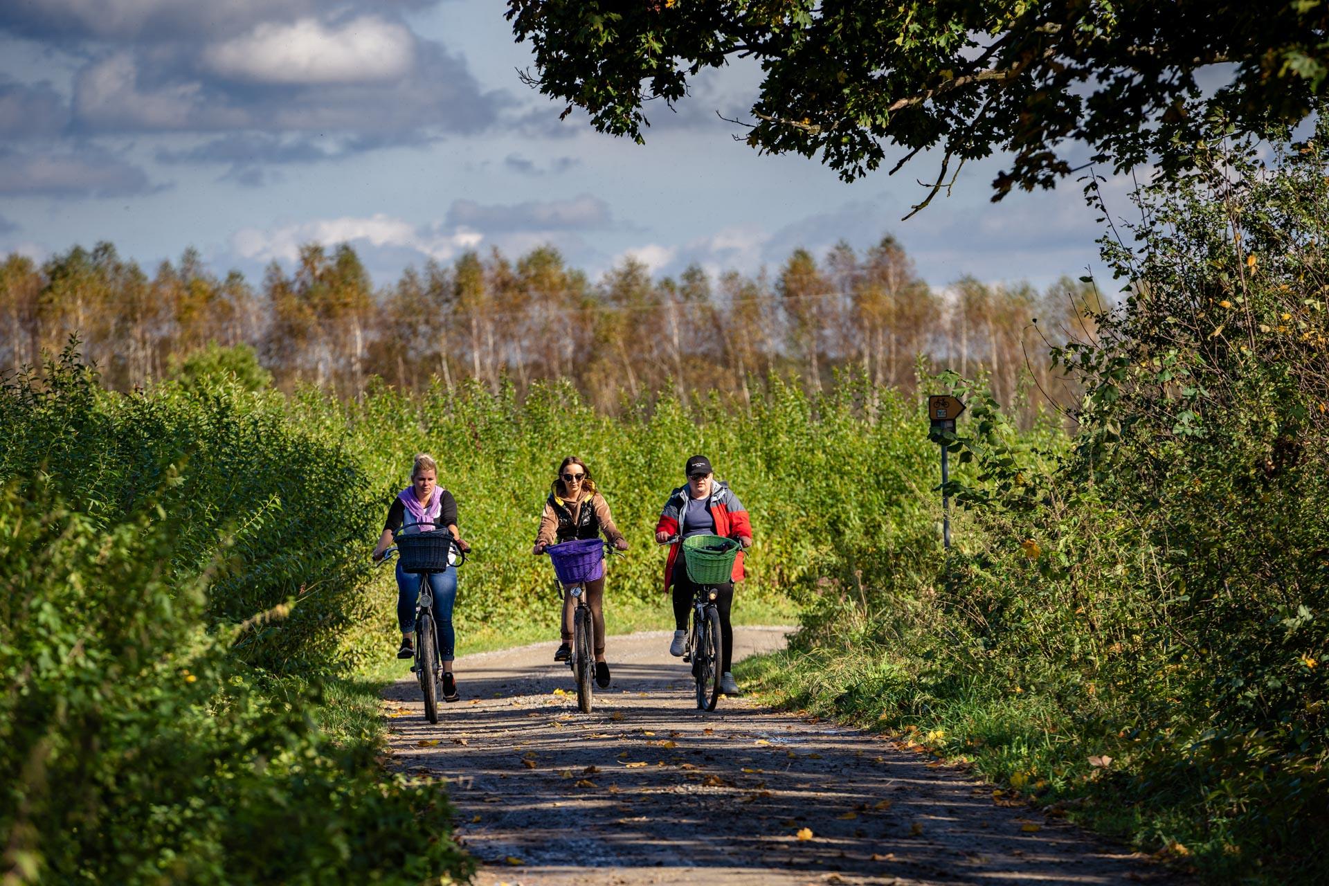 Trzy rowerzystki kolorowo ubrane jadą drogą polną wśród zielonej roślinności